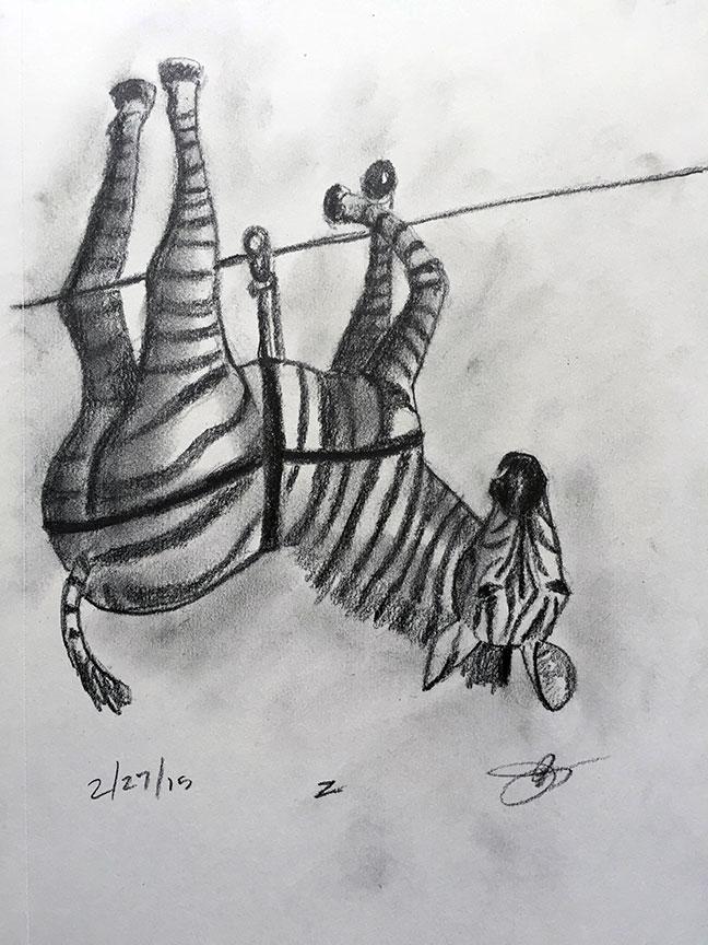 Z = Zebra Ziplining