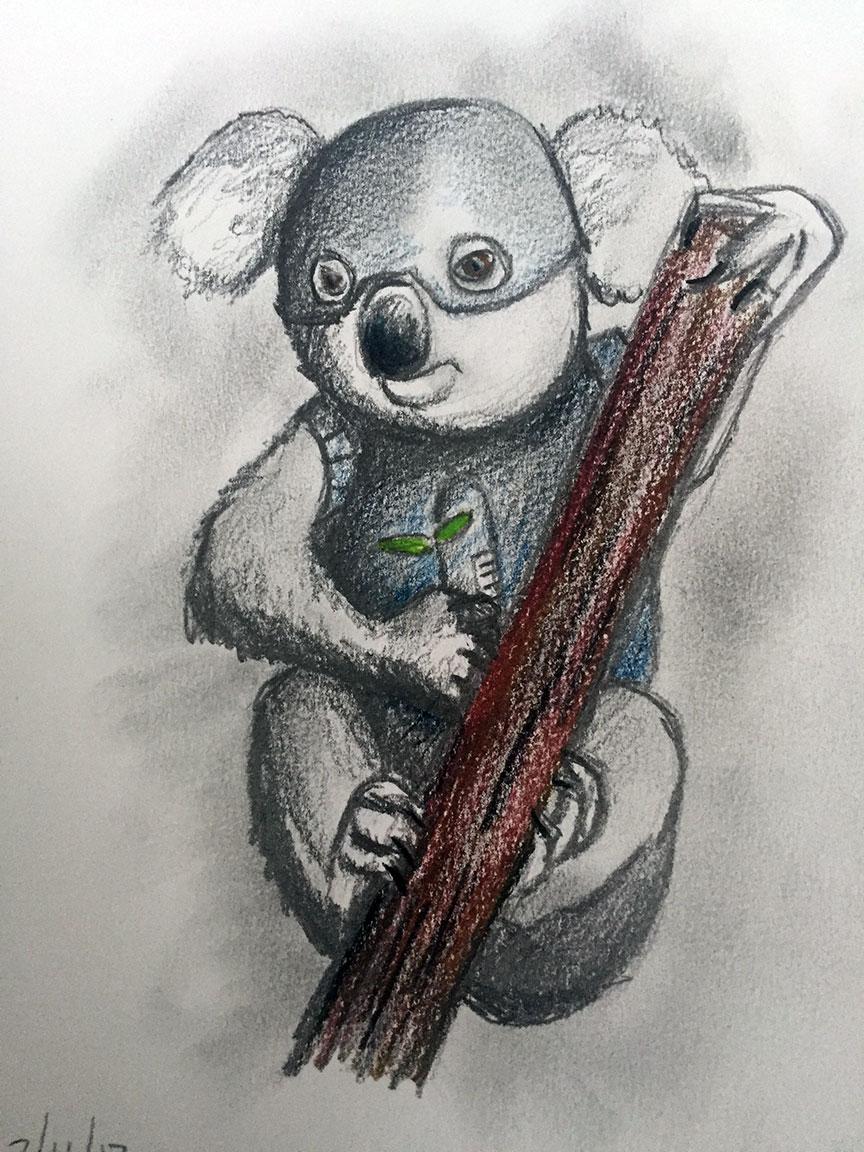 K2SO the Koala