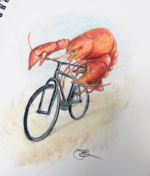 Lobster on a Bicycle